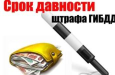 Какой срок оплаты и срок давности штрафов ГИБДД